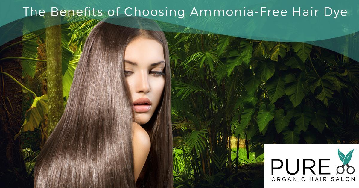 No Ammonia Hair Dye Archives Pure Organic Hair Salon